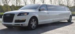 limousine (15)